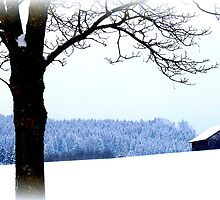 Bavarian Winter Scene by ©The Creative  Minds