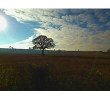 Wintery Cold Morning in the Midlands Photographic Print