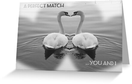 2 SWANS IN LOVE - A PERFECT MATCH by Colleen2012