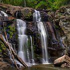 Stevenson Falls by Craig & Suzanne Pettigrew