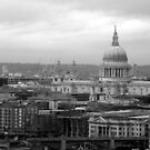 St Paul's Cathedral by Karen Martin IPA