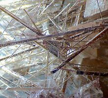 Sticks And Stones (Rutilated Quartz) by Stephanie Bateman-Graham