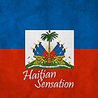 Haitian flag by BrandonDanis