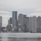 Boston Skyline by Willmoxdog