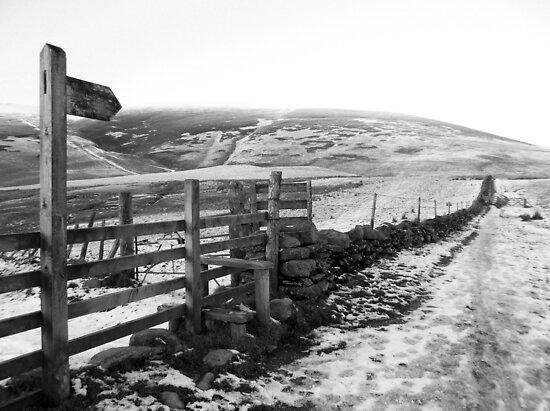 Lake District Path Cumbria UK by janett8