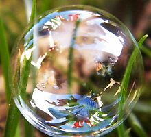 Washing line in a bubble by ElsT
