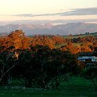 mnt buffallo near  Beechworth by Glen Johnson