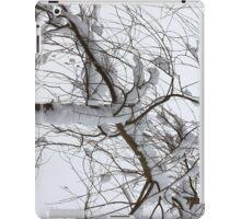 Willow in winter iPad Case/Skin