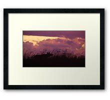 Rutting Bull Moose Framed Print