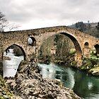 Medieval bridge in Asturias by vribeiro