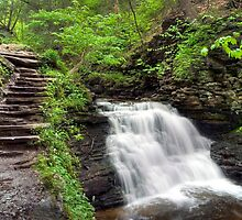 On The Trail Overlooking Mohican Falls by Gene Walls