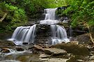 In The Mist of Tuscarora Falls by Gene Walls
