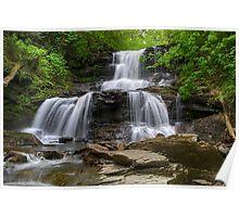In The Mist of Tuscarora Falls Poster