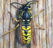 Wasp by Marion Yeo
