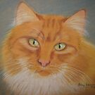 Pat's cat by Hilary Robinson