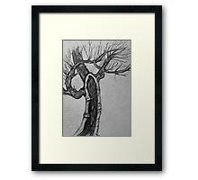Old Apple Tree Framed Print