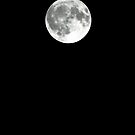 Full Moon - January 27th, 2013 by  Sophie Smith