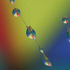Singing In The Rain by Gabrielle  Lees