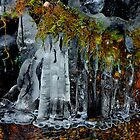 Ice by Charles &amp; Patricia   Harkins ~ Picture Oregon