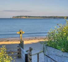 View to Caldey Island by griffin