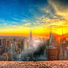 New york from the rock by Andrew-Thomas