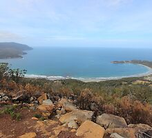 Pirates Bay - from the burnt Eaglehawk lookout by gaylene