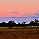 moon rising over farmland by mrobertson7