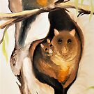 Bush Tail Possums by Glen Johnson