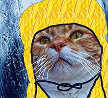 Raincat by Kristie Theobald