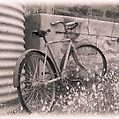 Old bike by gioiaw