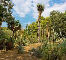 Cactus Plants Landscape by kirilart