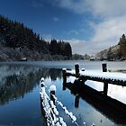 Loch Ard in Winter by Maria Gaellman