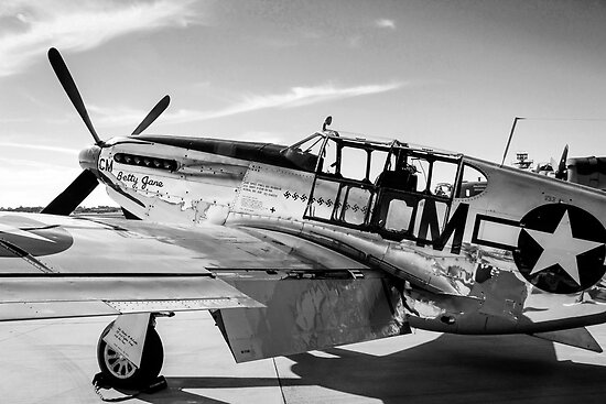 B/W P51C Mustang WWII Fighter Plane by chris-csfotobiz