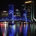 Jacksonville Fl by arlingtonpup
