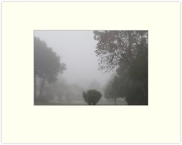 Foggy Morning by AuntDot