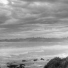 Sea Shore Two Black and White by Glen Johnson