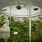 Botanic Gardens of Glasgow I by Soniris