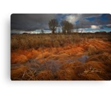 Marsh Melt Canvas Print