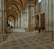 Cathedral, Bamberg 12 by Priscilla Turner