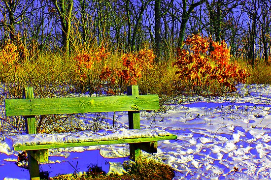 Winter Bench by EBArt