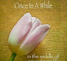 Once In A While by Jessica Manelis
