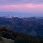 San Francisco from Mount Tam by Matt Tilghman