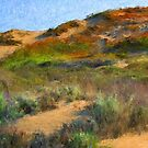 Sand Dune I - Seaside, CA by JimPavelle