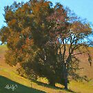 Rust Oak by JimPavelle