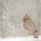 One Snowy Morning ~ by Renee Blake