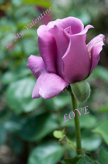 to my valentine by Penny Rinker