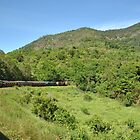 180 degrees turn (on the way to Kuranda) by sarbi