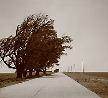 Oklahoma Route 66, 2012, Sepia. by Frank Romeo