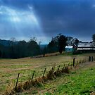 Home on the Range by donnau