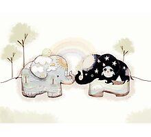 Good Karma Elephants Photographic Print